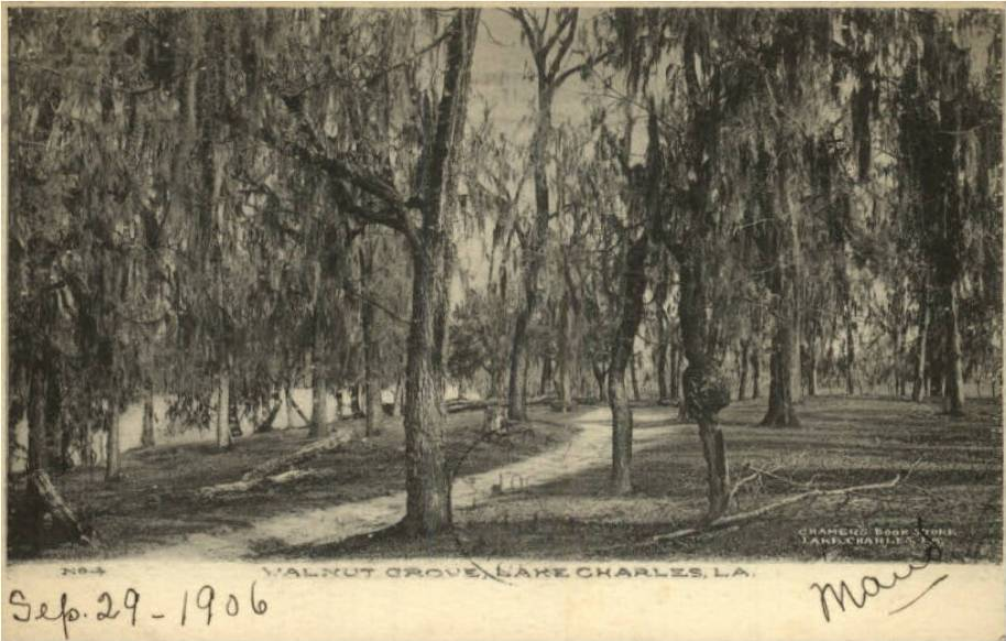 This 1906 photo of Walnut Grove was provided by CHPS Board Member Trent Gremillion.